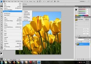 Vkládání nové obrázku a jeho editace