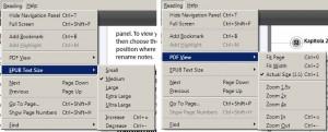 Rozdílné nabídky pro čtení EPUB a PDF