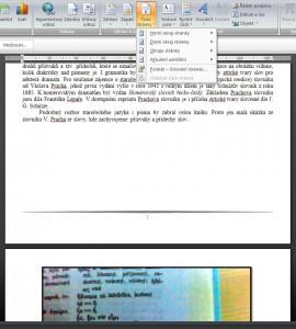 Opět zvolíme formát číslování stránek, formátů je nabízeno mnoho