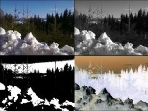 Základní úpravy obrazu v XnView